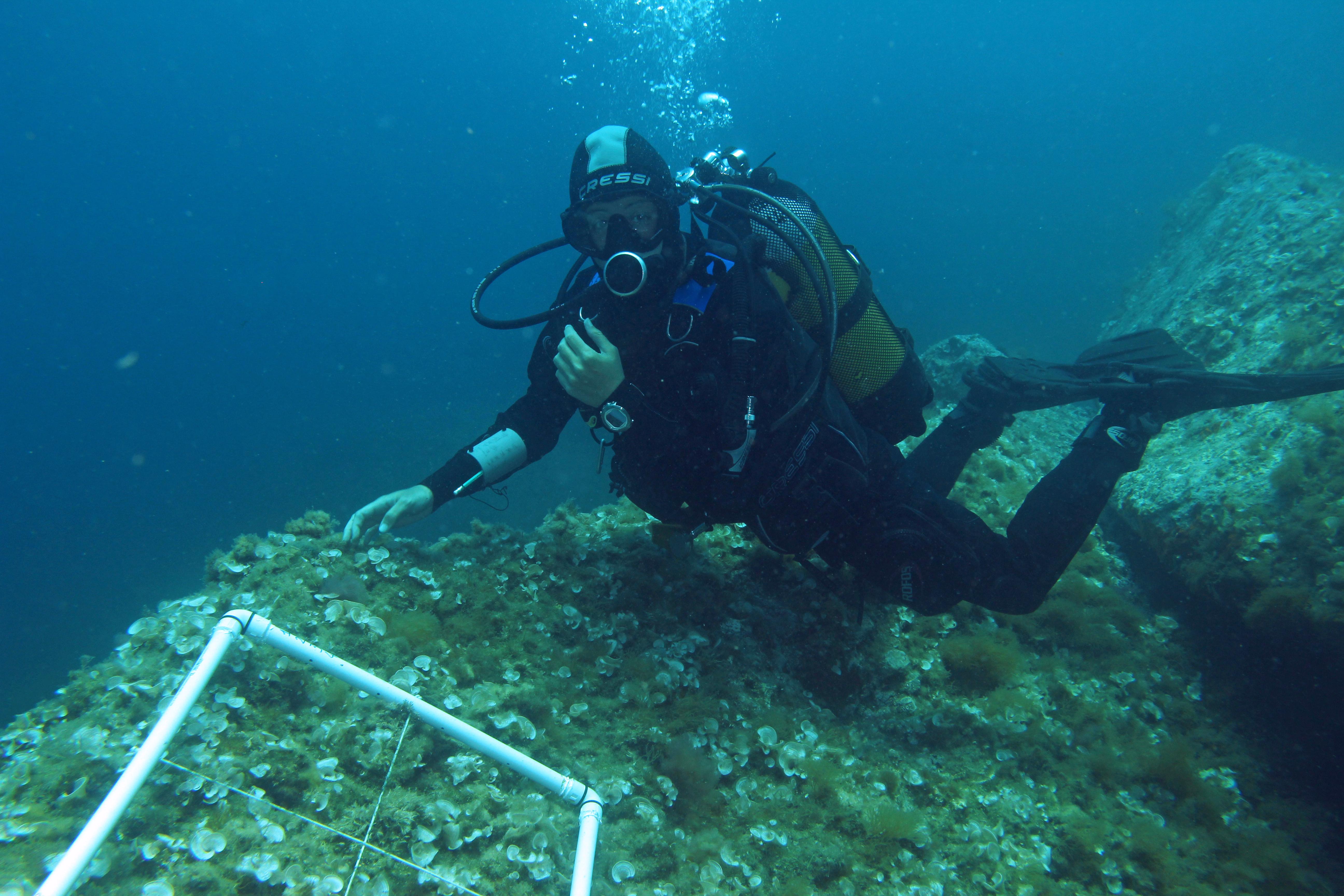 rilevamento sottomarino